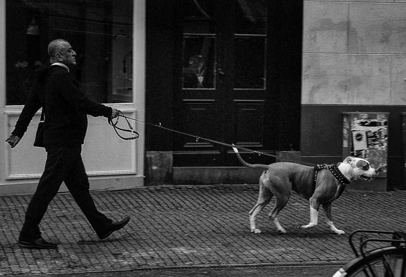 Man met hond op Thorbeckeplein Amsterdam 2007