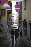 Paraplu's boven de straat
